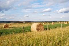 Autumn prairie and straw piles Royalty Free Stock Image