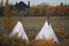 Autumn Prairie, träd och tipier Fotografering för Bildbyråer