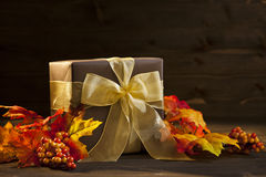 Autumn Present Royalty Free Stock Images