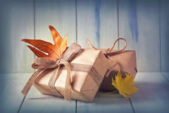 Autumn presents Royalty Free Stock Images
