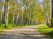 Autumn Preshpect, Yasnaya Polyana, Tula, Rússia Fotos de Stock Royalty Free