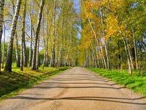 Autumn Preshpect, Yasnaya Polyana, Tula, Rússia Fotografia de Stock Royalty Free