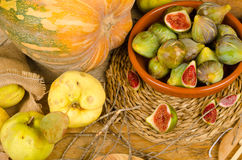 Autumn produce Stock Photos