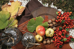 Autumn produce on a picnic blanket. – rosehip, walnuts, pears Royalty Free Stock Photos