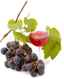 Autumn products. Glass  red wine with autumn fruits Stock Photography