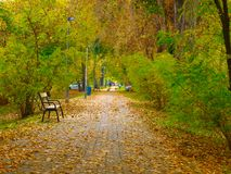 Autumn promenade. Autumn promenade in park, Budapest royalty free stock photography