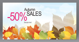 Autumn promotional flyer Royalty Free Stock Photography