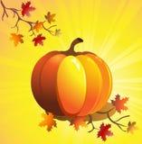 Autumn pumpkin Royalty Free Stock Photography