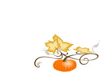 Autumn Pumpkin. With dry leaves. Illustration on white background with large space for text. Jpeg with clipping path stock illustration