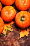 Autumn Pumpkin Background - calabazas anaranjadas sobre la tabla de madera T Imágenes de archivo libres de regalías