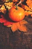 Autumn Pumpkin Background - calabazas anaranjadas sobre la tabla de madera T Fotos de archivo libres de regalías