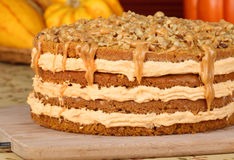 Autumn Pumpkin Cake Stock Images