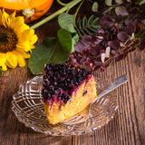 Autumn pumpkin cheesecake with cranberries Royalty Free Stock Photo