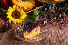 Autumn pumpkin cheesecake with cranberries Stock Image