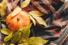 Autumn pumpkin with colorful leaves on stylish scarf fabric, spa. Ce for text. happy halloween or thanksgiving top view. seasonal greetings, fall holidays Royalty Free Stock Image