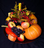 Autumn pumpkin composition Royalty Free Stock Photo