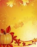 Autumn pumpkin Stock Photos