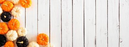 Autumn pumpkin corner border in Halloween colors orange, black and white against a white wood banner background