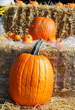 Autumn pumpkin decoration Royalty Free Stock Photography