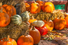 Autumn Pumpkin Display with Straw Bales Stock Photography