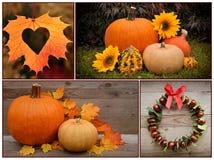 Autumn Pumpkin e decorazione thanksgiving Fotografie Stock Libere da Diritti
