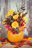 Autumn pumpkin flower arrangement Royalty Free Stock Photo