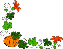 Autumn pumpkin frame Royalty Free Stock Photo
