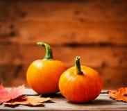 Autumn Pumpkin Happy Thanksgiving Background med orange pumpki Royaltyfria Bilder