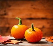 Autumn Pumpkin Happy Thanksgiving Background mit orange pumpki Lizenzfreie Stockbilder