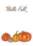 Autumn Pumpkin Harvest Photo libre de droits