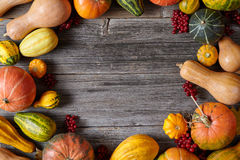 Autumn pumpkin harvest decoration frame empty blank space for design text Stock Images