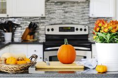 Autumn pumpkin on the kitchen table royalty free stock images