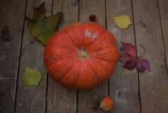 Autumn pumpkin with leaves on wooden board. Autumn pumpkin with leaves on a wooden board Royalty Free Stock Photography