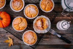 Autumn Pumpkin Muffins caseiro Fotos de Stock Royalty Free