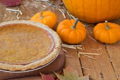 Autumn Pumpkin Pie stockbild