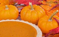 Autumn Pumpkin Pie Fotografia Stock Libera da Diritti