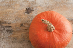 Autumn pumpkin on a rustic wood background Royalty Free Stock Images