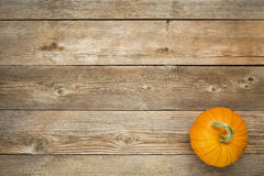 Autumn pumpkin on rustic wood Stock Images
