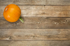 Autumn pumpkin on rustic wood Royalty Free Stock Images