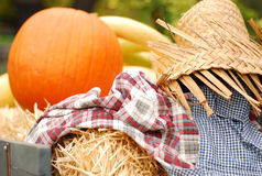Autumn pumpkin and scarecrow Royalty Free Stock Photography