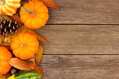 Autumn pumpkin side border against rustic wood Royalty Free Stock Images