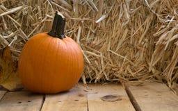 Autumn Pumpkin Royalty Free Stock Photos