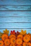Autumn Pumpkin Thanksgiving Background Stock Images