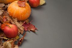 Autumn Pumpkin Thanksgiving Background - calabaza anaranjada y manzanas rojas sobre las hojas de la caída en la tabla gris Copie  Fotografía de archivo