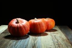 Autumn Pumpkin Thanksgiving Background - calabazas anaranjadas sobre el ru Fotos de archivo libres de regalías