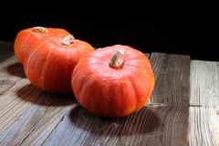 Autumn Pumpkin Thanksgiving Background - calabazas anaranjadas sobre el ru Fotografía de archivo libre de regalías