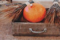 Autumn Pumpkin Thanksgiving Background - calabazas anaranjadas sobre la tabla de madera Fotografía de archivo