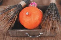 Autumn Pumpkin Thanksgiving Background - calabazas anaranjadas sobre la tabla de madera Fotos de archivo libres de regalías