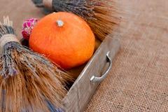 Autumn Pumpkin Thanksgiving Background - calabazas anaranjadas sobre la tabla de madera Fotografía de archivo libre de regalías