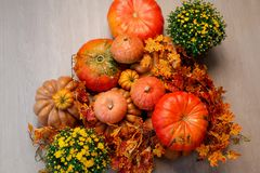 Autumn Pumpkin Thanksgiving Background - calabazas, hojas y flores anaranjadas Fotografía de archivo libre de regalías
